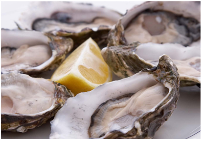 "Oyster producers criticise Fisheries Ministry for ""over reaction"" every time shellfish test positive for DSP"