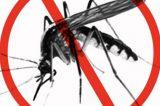 Namibia aims to eradicate Malaria in foreseeable future