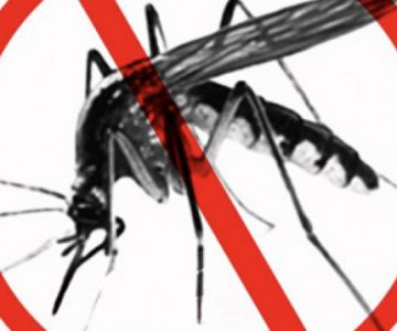 Namibia aims to eradicate Malaria in foreseeable future